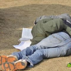 Учение - сон