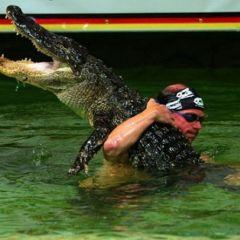 Голыми руками на крокодила