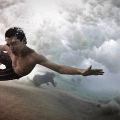 Подводные фото Алекса Типпла