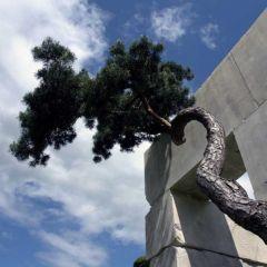 Музей дерева в Цюрихе, Швейцария (фото)