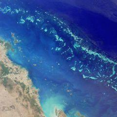 Фотографии Большого Барьерного рифа
