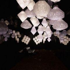 Проект Swarovski Crystal Palace