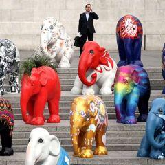 Парад слонов 2010