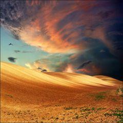 Фотографии природы от Катарины Стефанович (Katarina Stefanovic)