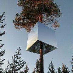 Гостиничный номер на дереве