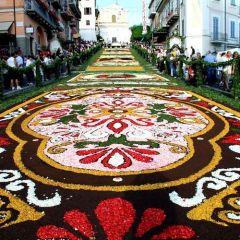Цветочные картины в Генсано