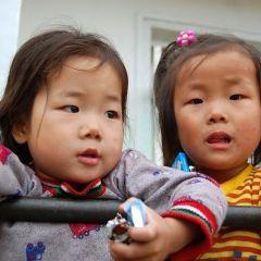 Дети – будущее Кореи