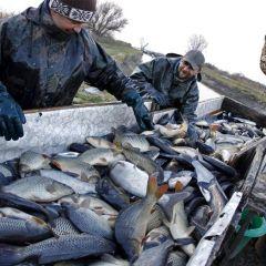 Рыбалка в Хортобадь