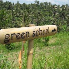 Экологичекая школа
