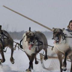 Ханты-Мансийский автономный округ от Герда Людвига