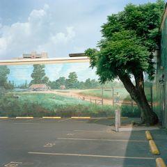 Озелененный Новый Орлеан после Катрины