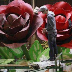 Подготовка к Параду Роз в Пасадене