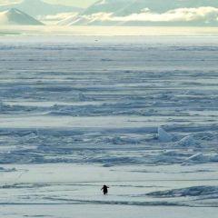 Антарктика (Часть 1)