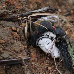 Последствия японского цунами