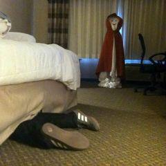 Отельные розыгрыши Берта Крайшера