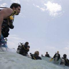 Мексиканская свадьба под водой