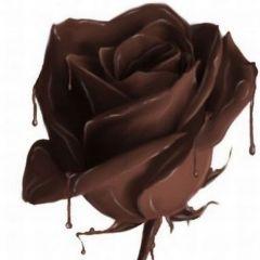 Шоколадное диво