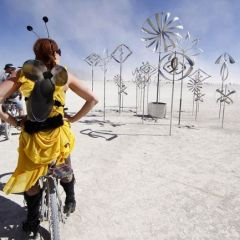 Фестиваль Burning Man 2011 года