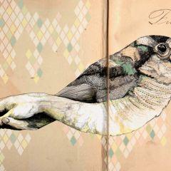 Удивительные иллюстрации Gabriella Barouch