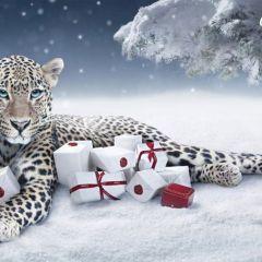 Снежный барс от Cartier