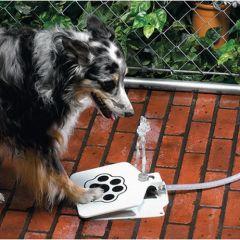 Фонтан для собак