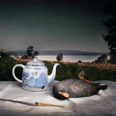 Натюрмортная фотография от Мэриен Дрю