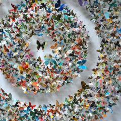 Живые скульптуры бабочек