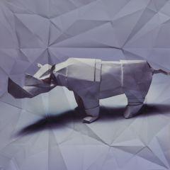 Серия фотографий «Оригами»
