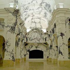 Новая инсталляция от Carlos Amorales
