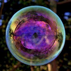 Тема «мыльных пузырей» в проекте Richard Heeks