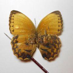 Роспись по бабочкам