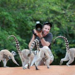 Лемуры Мадагаскара в объективе Дэйла Мориса