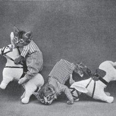 Смешные щенки и котята из прошлого