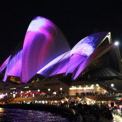 Фестиваль Живой Сидней