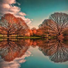 Зеркальные фотографии природы