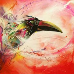 Красивые птицы Luis Seven Martins