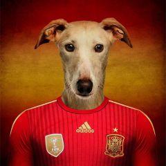 Собаки-футболисты: рекламная кампания Кубка Мира 2014