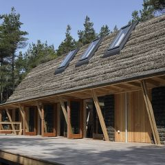Необычный датский дом в островном стиле