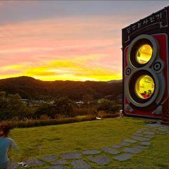 Необычное фотокафе в форме камеры Rolleiflex в Сеуле