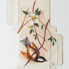 Птицы Sara Landeta