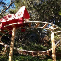 Отец сделал парк развлечений для своих детей