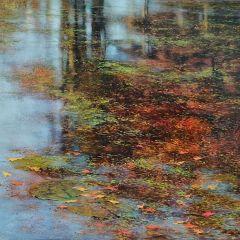 Абстрактные пейзажи Teri Malo