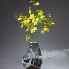 Разбитые вазы