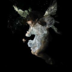 Подводные фото Alexander James