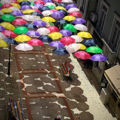 Нашествие зонтиков