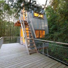 Интересный домик на дереве