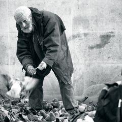Январский Париж в фотографиях Ольги Карабчевской