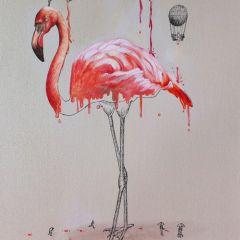 Иллюстрации Ricardo Solis