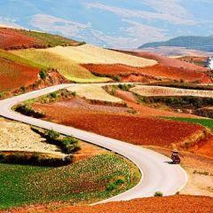 Красные рисовые террасы - удивительное зрелище