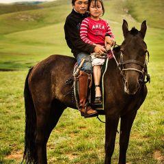 Монголия в фотографиях Brian Hodges